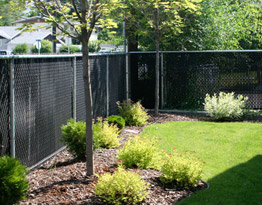 Chain link Fence Residential